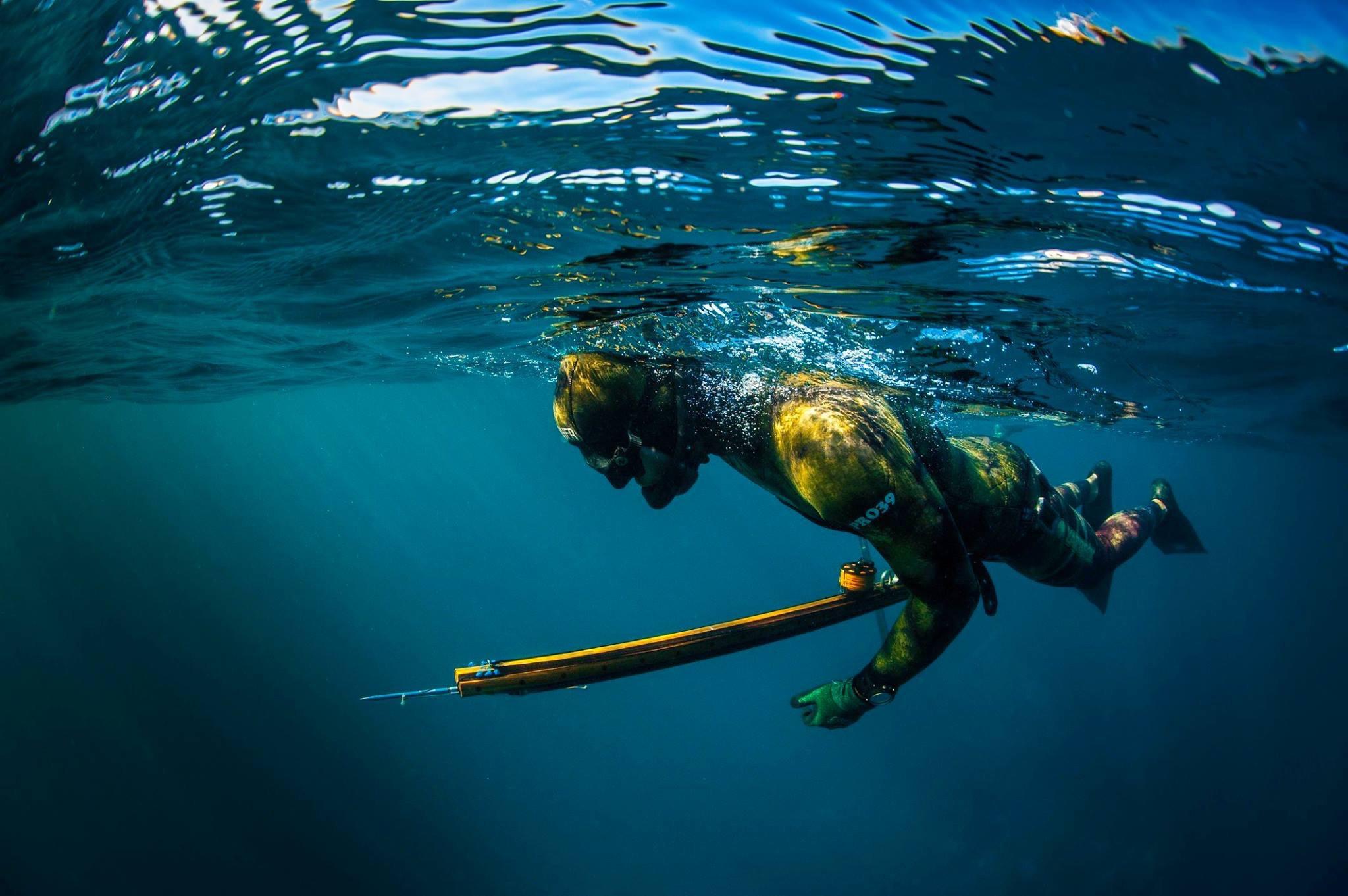 Spearfishing Coaching