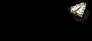 logo atipyk.png