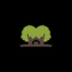 floresta-urbana-sinop-mt_ (4).png