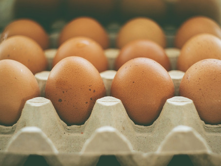 In Defense of Cholesterol: Why Cholesterol is Vital to your Health- by Dr. Nathan Servey, your local