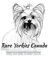 rare yorkies logo 1.jpeg