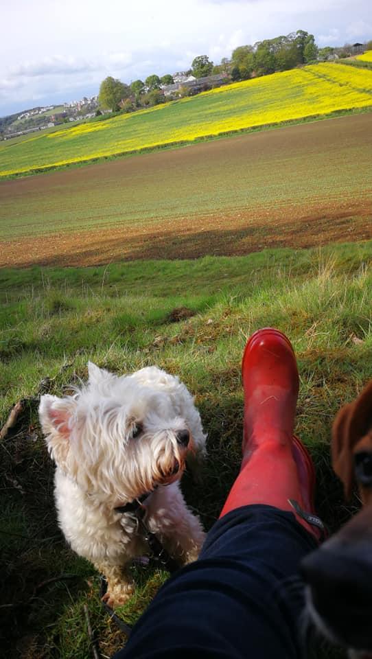 Walks in wellies