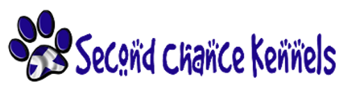 second chance logo.png.opt356x88o0,0s356