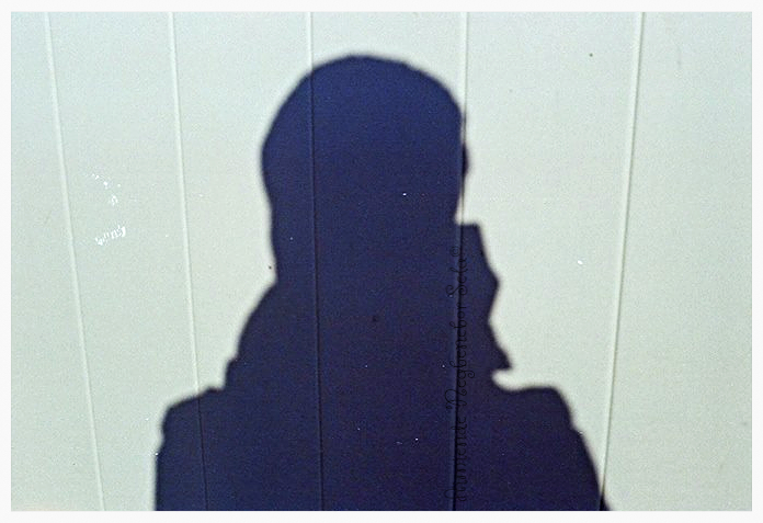 Facebook - Curious about my shadow_edited. lol!