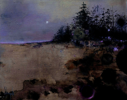 Arrival of a summer night in june