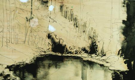 Black lake among trees (study)
