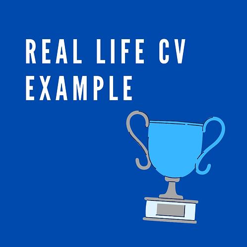 Real life CV example