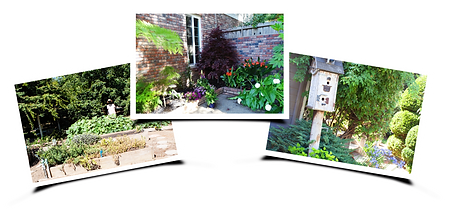 3-Home-Gardens.png