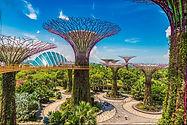 Gardens-By-the-Bay.jpg