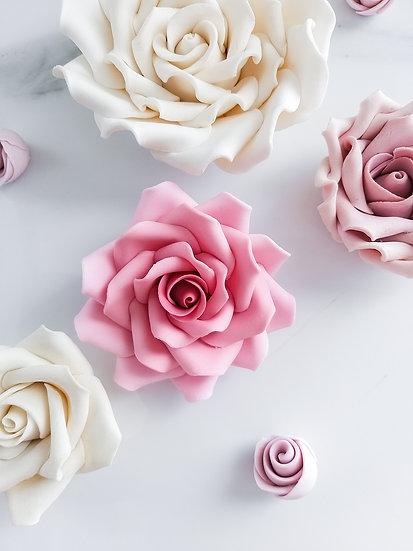 Vintage ruža, 20.2. sobota, 10:00