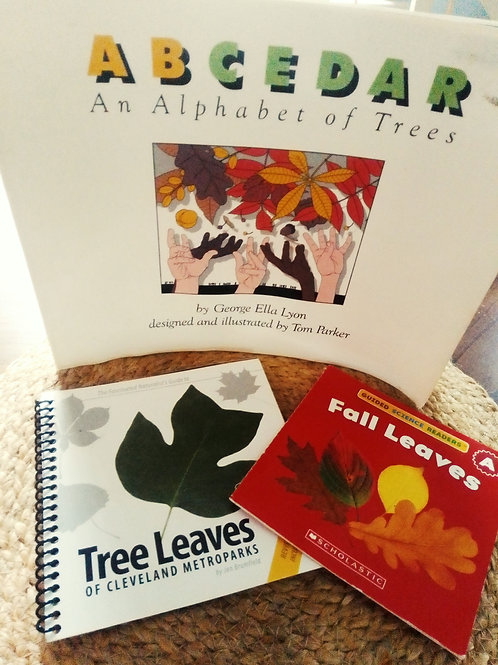 Leaves! Fall Remote Learning Activity Kit