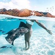 spot-raies-et-requins-moorea