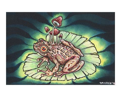 """""""Fungi Frog"""" Mixed media"""