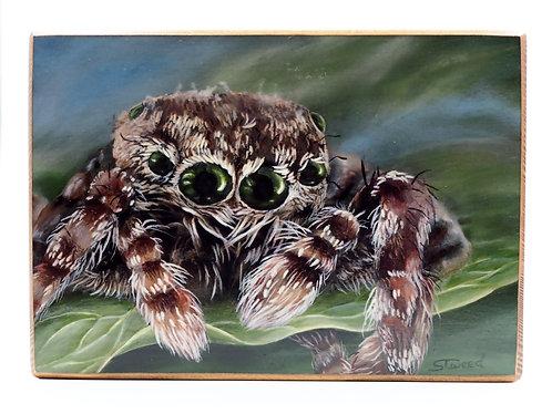 """Spidey"" Acrylic Painting"