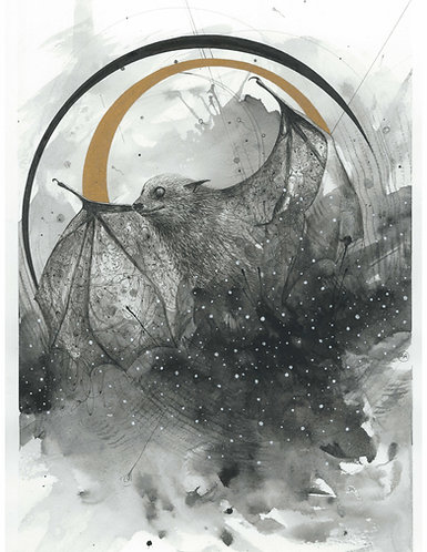 """Cosmic Bat"" Fine Art Print"