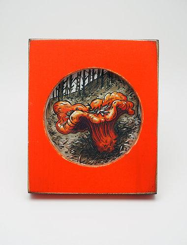 Lobster Mushroom / Emily Poole