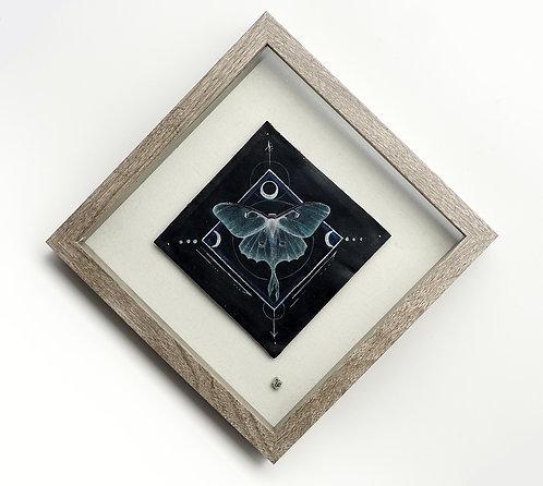 Lunar Muse  / Karin Ashley (Ampersand Curiosities)