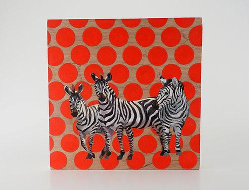 Zebras / Caitlin Tibbs