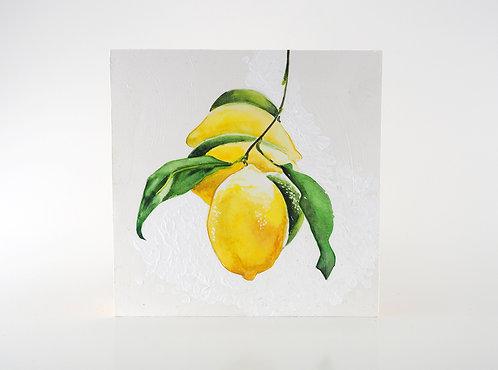 Lemons / Anya Mironets Keyes Lemons