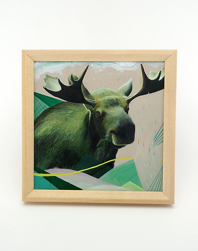 Green Moose / Jasmine Co