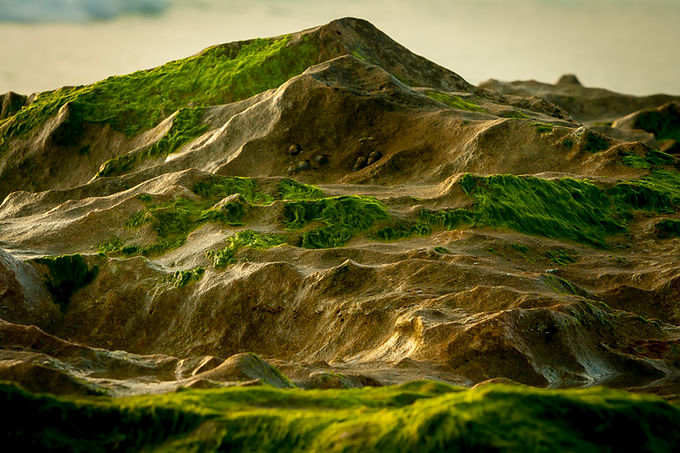 The Green Mountains
