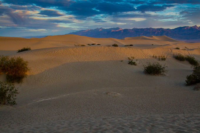 The Dunes at Dusk