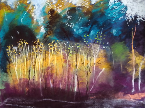 Expressive Soft Pastels at Sussex Prairies - Monday 28th September