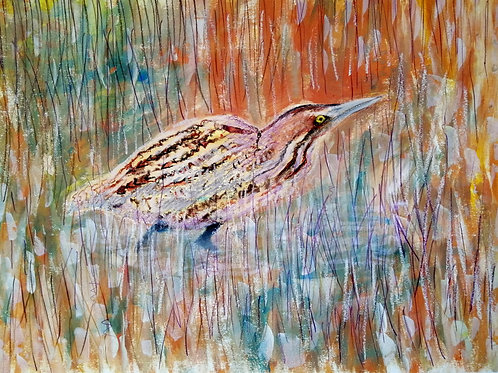 'Creeping Bittern' - mixed media 430 x 580mm