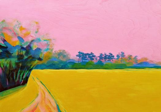 'Field'