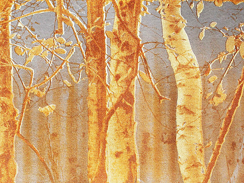 'In The Magical Wood' screen print 218 x 289mm