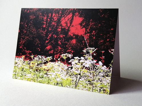 'Cow Parsley Morning' greeting card