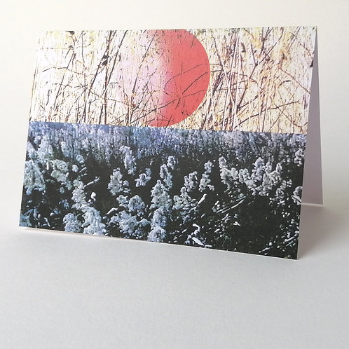 'Reedbed' greeting card