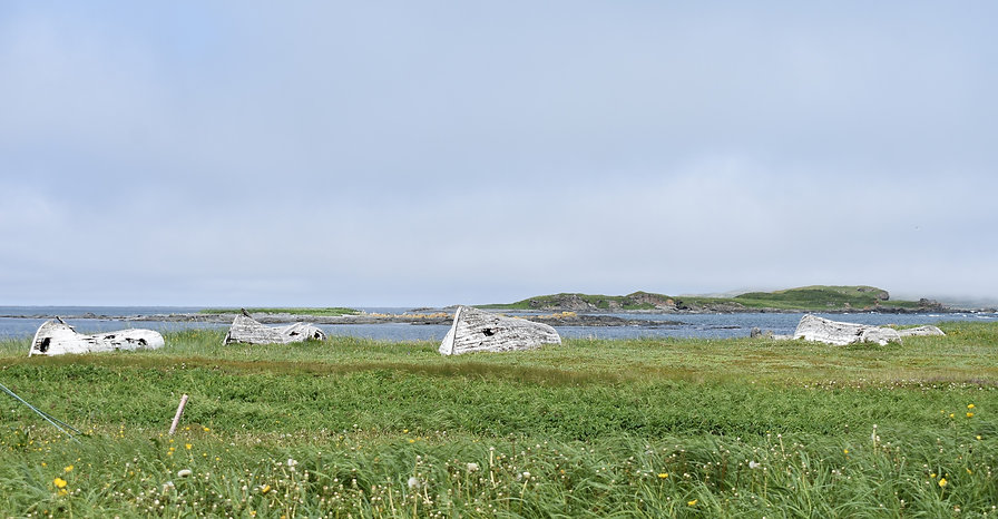 Dilapidated fishing boats rest in a meadow facing the ocean at Norstead, A Viking Port of Trade in L'Anse aux Meadows.