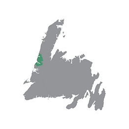 Grey map of Newfoundland with the Gros Morne region highlighted green.