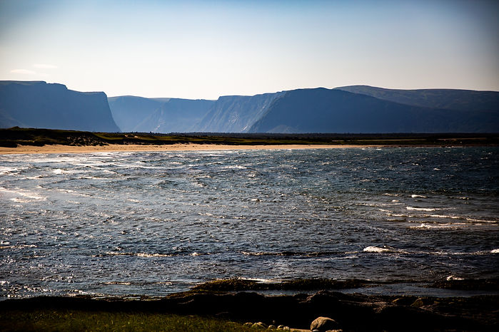 Windswept coastline and sandy beach with Western Brook Pond Fjord in the background.