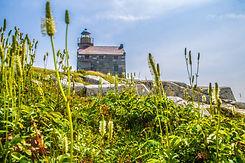 Rose Blanche Lighthouse (2).jpg