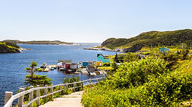 Walking path in the resettled community on Newfoundland's southwest coast during a tour with Port aux Basques Marine Excursions.
