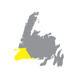 Grey map of Newfoundland with the Southwest Coast region highlighted yellow.