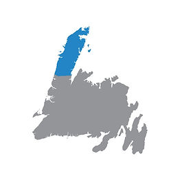 Grey map of Newfoundland with the Viking Trail region highlighted blue.