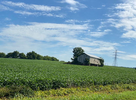 Scenic Views from Brainards Road, Liberty Twp., Warren County
