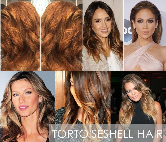 Tortoise shell hair.jpg