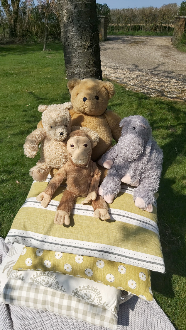Big Ted and his Friends