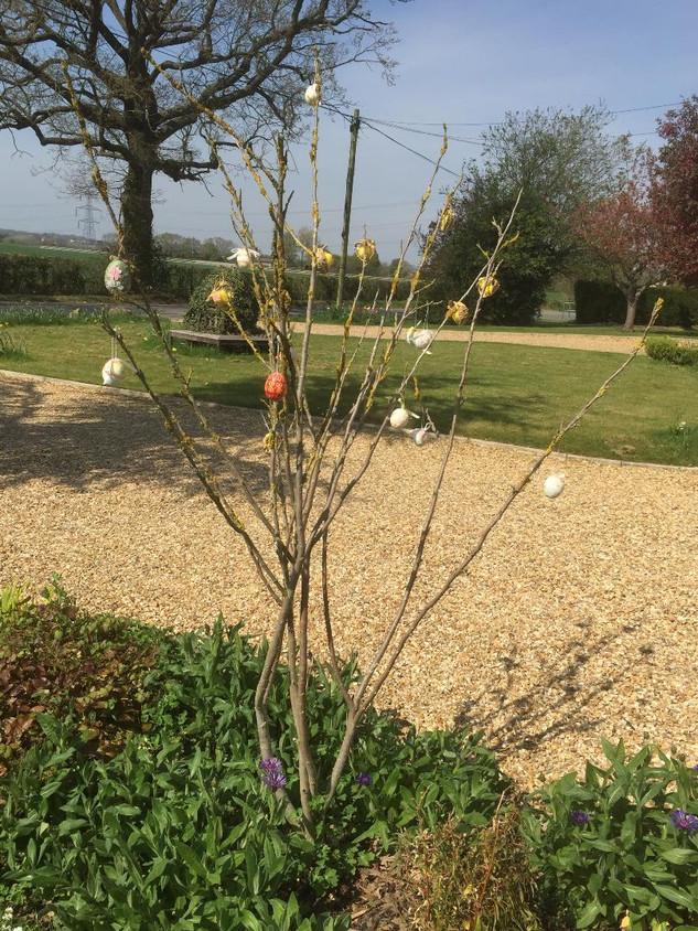 Easter Tree at Wickham St Pauls