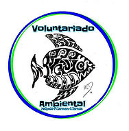 VOLUNTARIADO AMBIENTAL MAL PAIS.jpeg