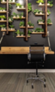 plants, wall, creative, coworking, shared space