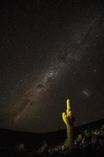Atacama night
