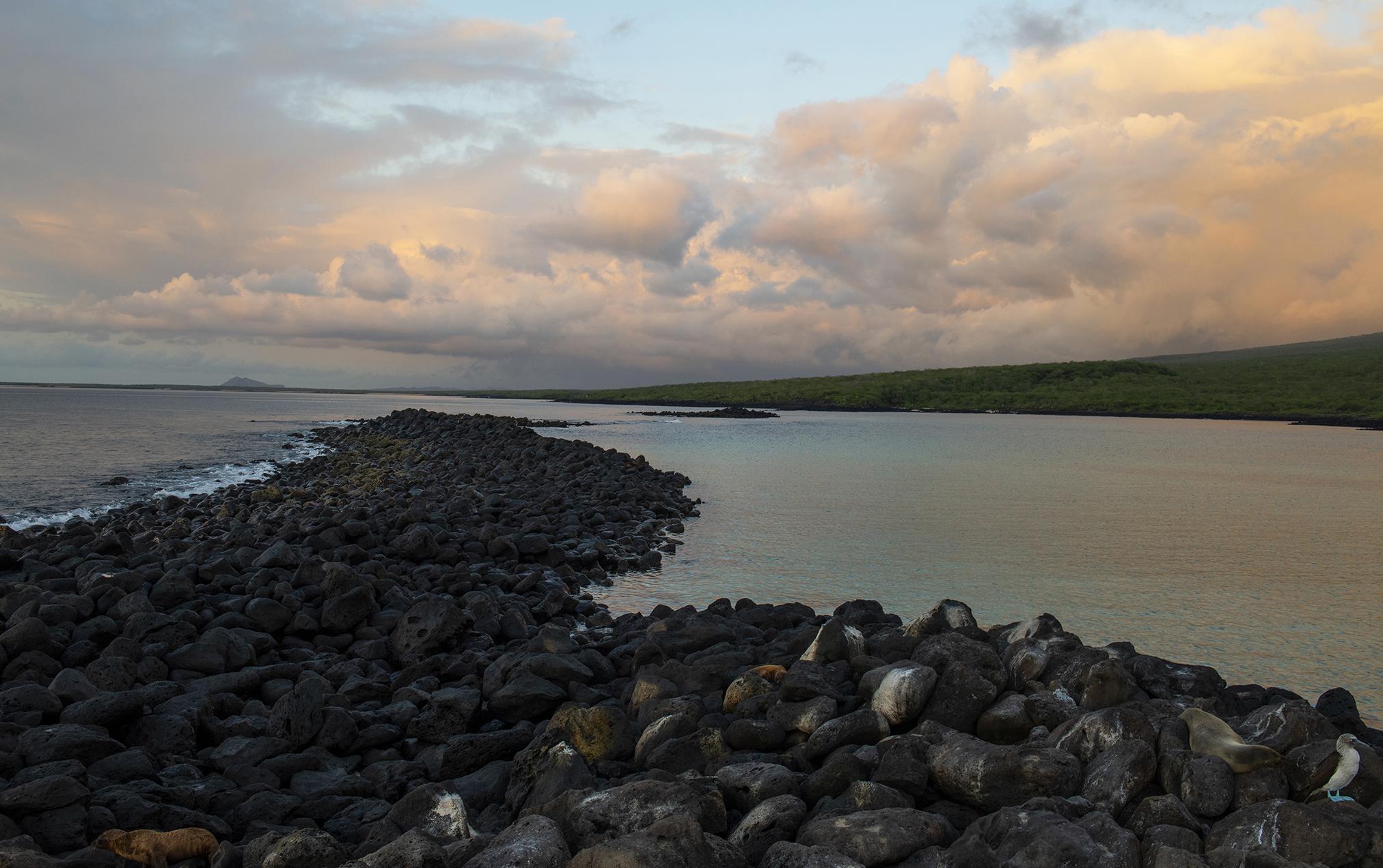 Isla Lobos, Galapagos