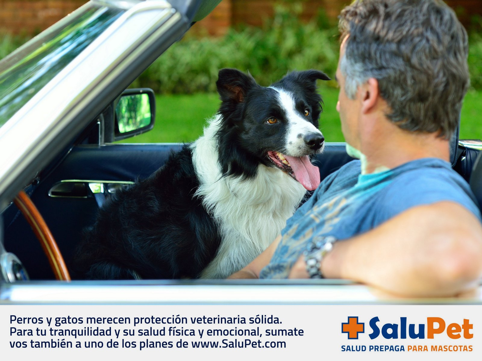 SaluPet 01 - Pablo Cersosimo 20140812 LR.jpg