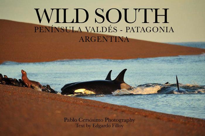 Wild South, Peninsula Valdes, Patagonia Argentina