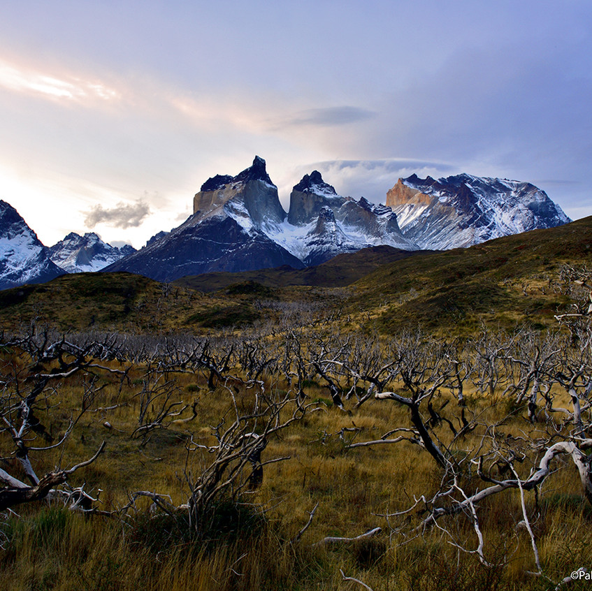 Horns of Paine Towers